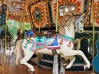 This Amusement Parks Fun Park Has Everything Exciting To Create An Exciting Day!
