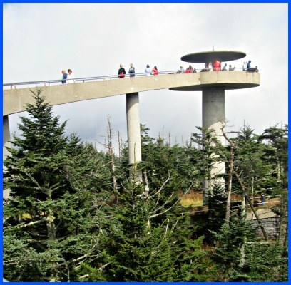 a nature-hike to clingmans dome