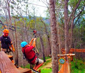 Anakeesta Ziplines are quite a challenge and lots of fun!