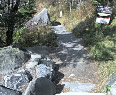 an appalachian-trail path