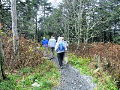 people hiking on appalachian-trail