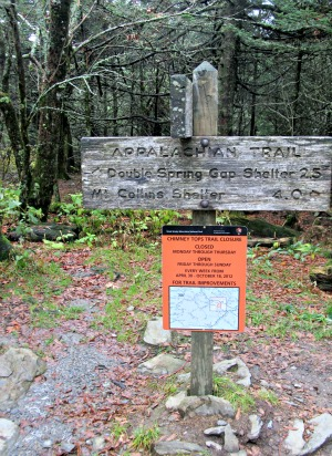 This Appalachian Trail Sign Only Marks A Milestone Of The Long Hike Ahead