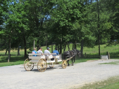 taking a ride in a cades-cove buggy