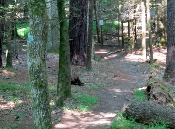 A Cades Cove hike can be a real challenge!