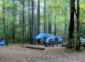 Cataloochee Campers enjoy the beautiful mountains outdoors