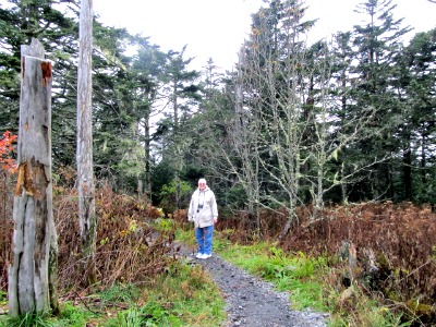 Those Hiking the Tennessee/North Carolina Appalachian Trail area enjoy seeing Clingmans Dome.