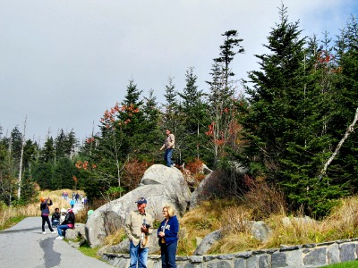 rocks in clingmans-dome