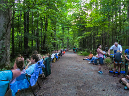 There's going to be quite a firefly audience in the Smokies tonight!