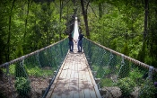 Be sure and check out Sevierville attractions Foxfire Swinging Bridge.