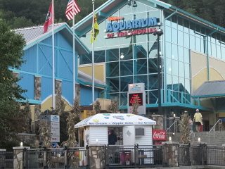 It's Gatlinburg Attractions Aquarium that draws the big crowds!