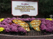 dollywood has grand-opening excitement
