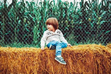 Experience Hay Ride fun at any age!
