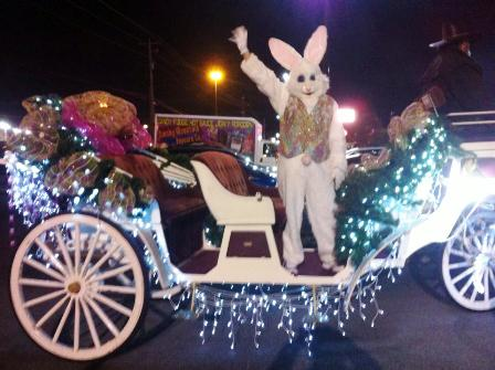 Come join the fun on a Heritage Carriage Rides Birthday Party.
