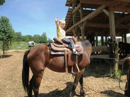 With Heritage Carriage Rides Children also get to enjoy horseback riding at Goldrush Riding Stables.