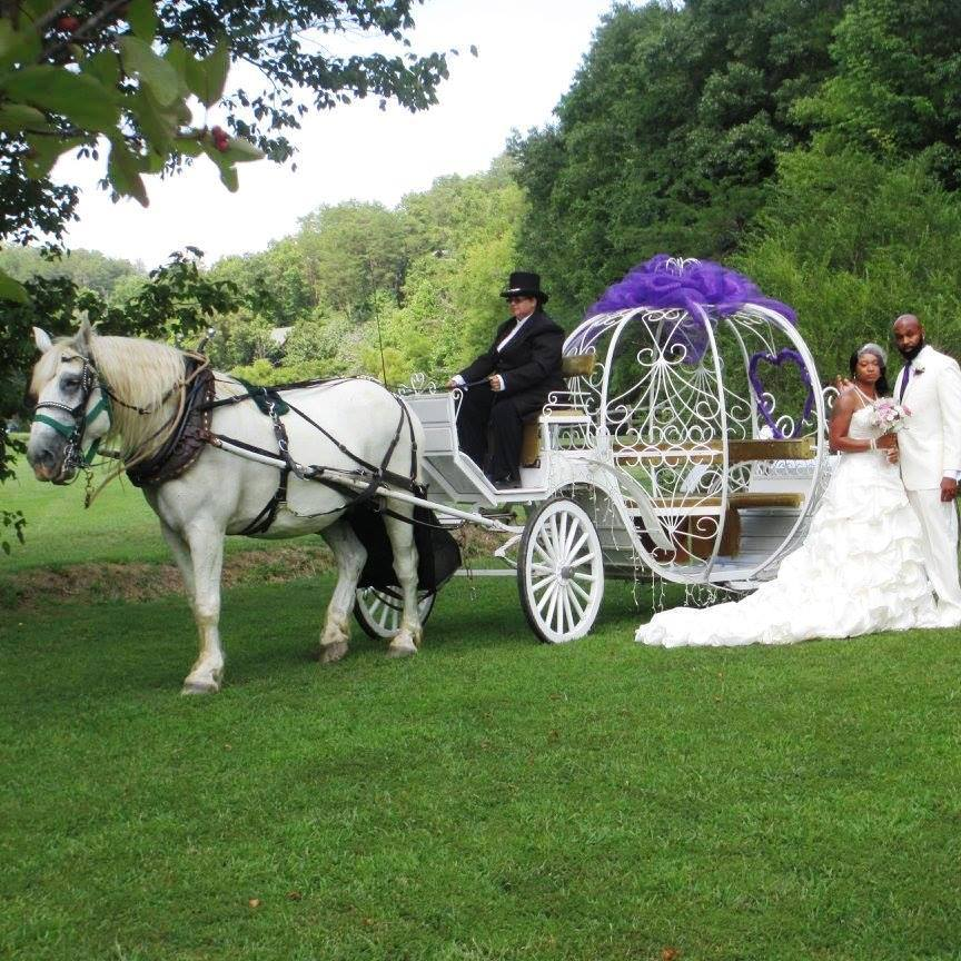 This Heritage Carriage Rides Couple Are Experiencing a Cinderella Wedding!