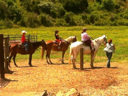 Getting ready for the ride at Heritage Carriage Rides Goldrush Riding Stables.