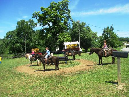 Heritage Carriage Rides Pony rides are at Goldrush Riding Stables.