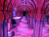 Hannah's Mirror Maze is filled with color and intrique!