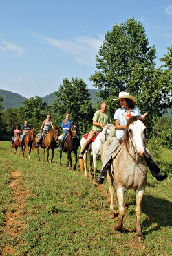 a day of horseback-riding
