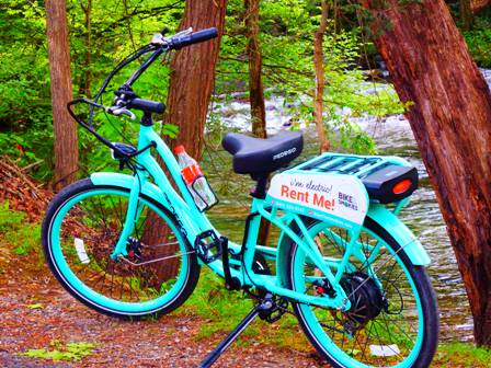 While Mountain Biking The Pedego is a great way to enjoy the ride stress free.
