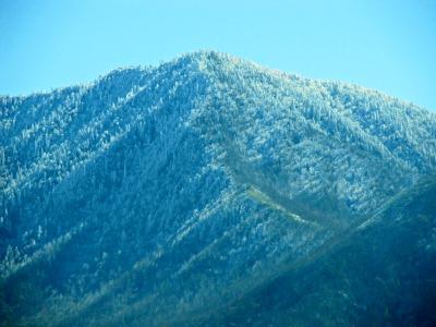 mt-leConte mountains