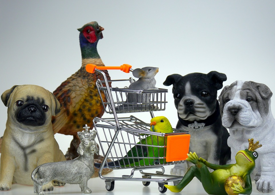 Purchasing pet supplies wholesale means lots of savings!