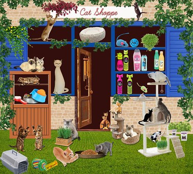 The pet supply store is a great place to find all your pet's needs.