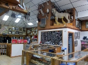 sevierville-shopping knife works