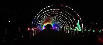 Shadrack Christmas Wonderland's tunnel of lights is amazing to drive through!