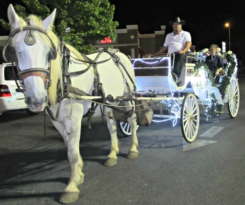 carriage for smoky-mountain-wedding