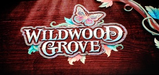 A new addition to Dollywood!  It's what's happening with Wildwood Grove.