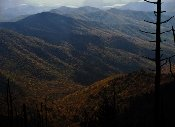 If you want to see beautiful mountains come to bible-quotes-lovely Smoky Mountains