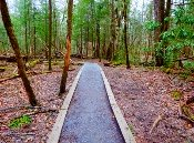 The Cataract Trail is smooth before changing into a dirt path.