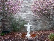 These Christ In The Smokies blossoms are a symbol of beauty inside the outdoor garden.