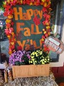 a dream-season fall