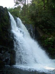 The Great Smoky Mountains are popular for their many waterfalls.