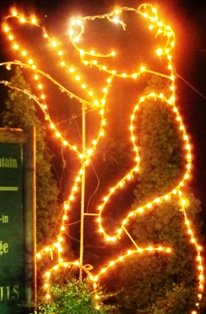 The Smoky Mountain bear is popular during Gatlinburg Winter Magic Trolley of Lights Tour!