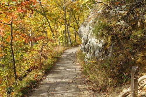 Laurel Falls Walking Trail Offers Beautiful Scenery In Every Season