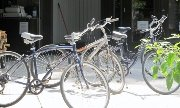 bicycles are great recreational-vehicle-rentals