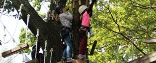 Climb to the top of the world with Sevierville Attractions Tree Tops Ropes Course