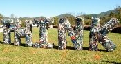 This Wears Valley Festival trash art was created to make others aware of littering.